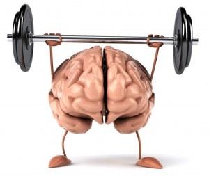 brain-a